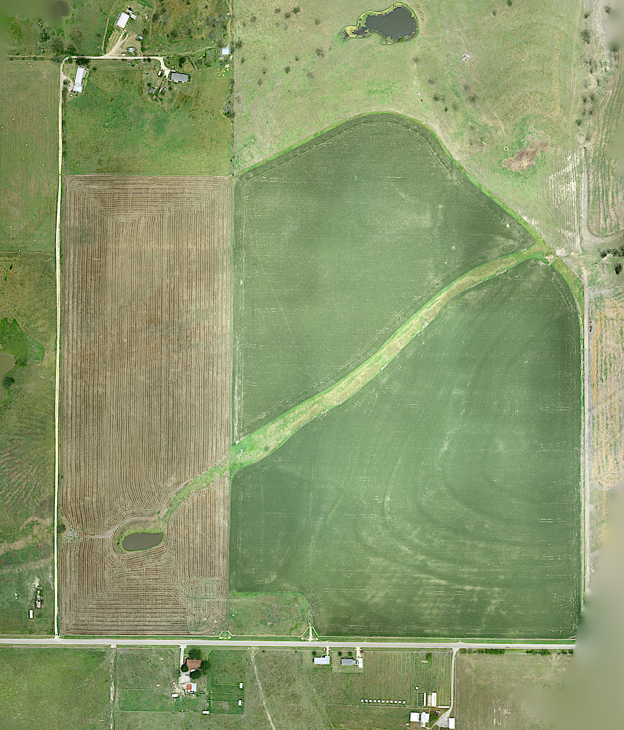 Orthomap of a corn field and surroundings